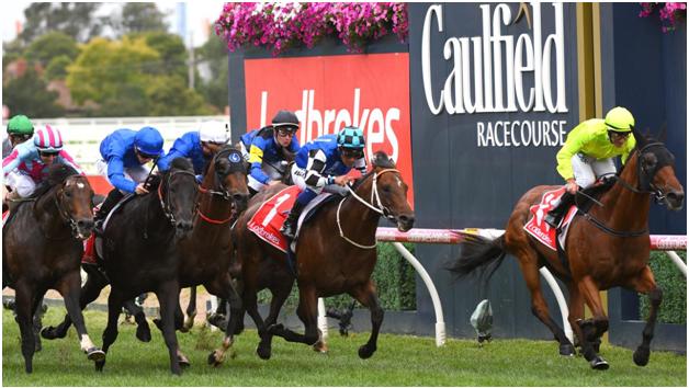 Australian-spring-race