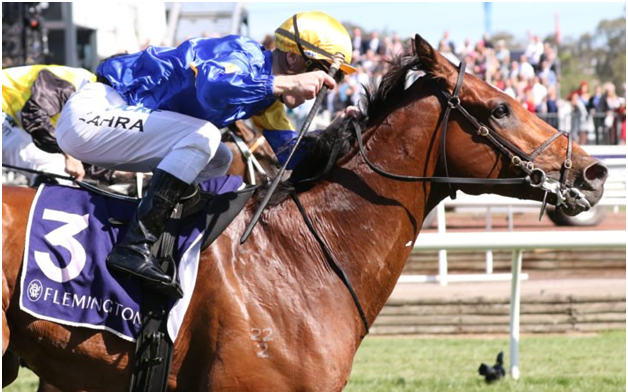 What are G1 VRC Sprint Classic and Australian group races?