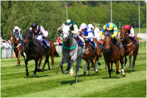 Flat Races- Horse racing Australia