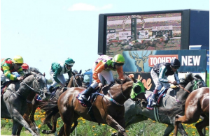 Eight rules to understand when betting on horse racing