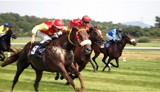 How to play virtual horse racing at online casinos