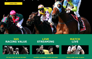 Two best online bookies to watch live streaming of thoroughbred races in Australia