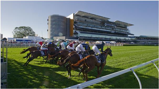 Randwick race track