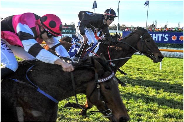 TAB Horse Races Carnival