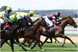Types of Horse Races in Australia