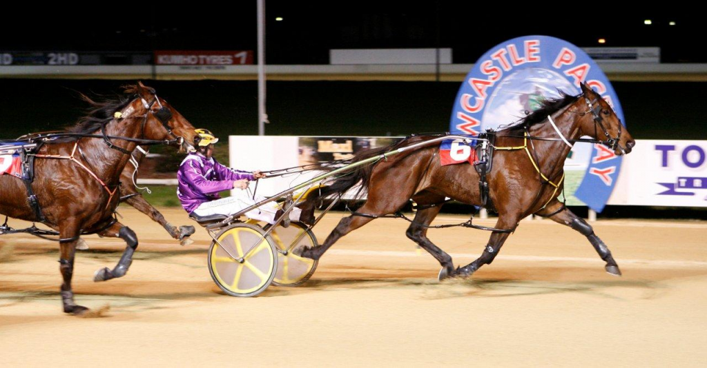 Types of horse races- Harness racing