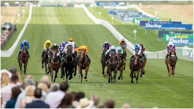 horse betting rule