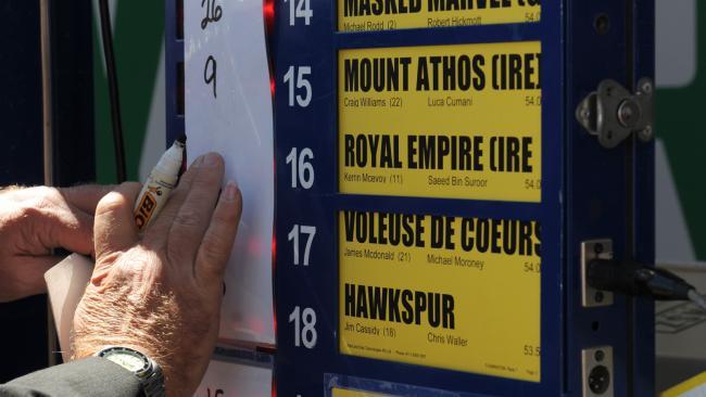 horse racing betting board
