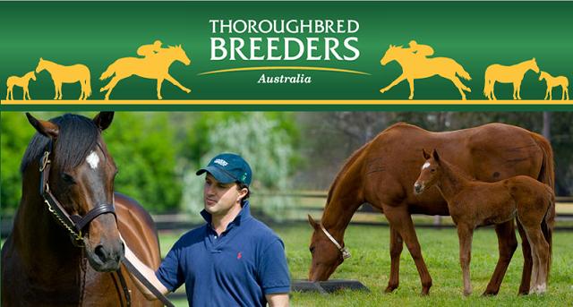 Thoroughbred Breeders Australia