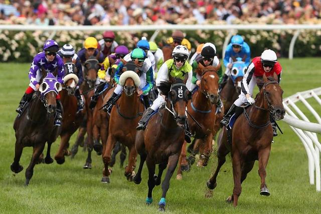 australia horseracing