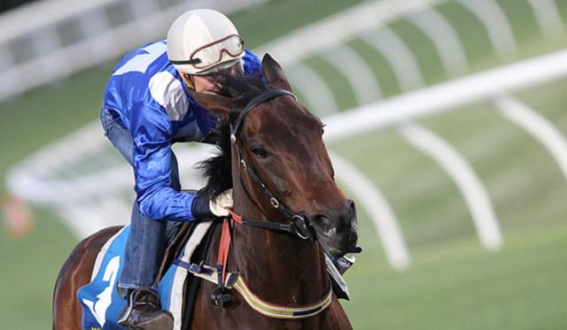 winx best racing horse australia