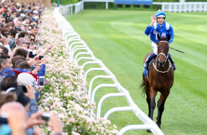 winx horse of the year